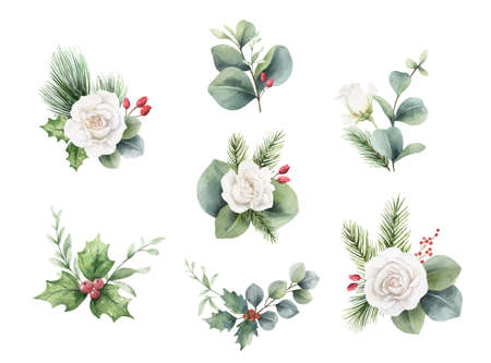 Watercolor vector Christmas bouquets with fir branches, flowers and eucalyptus. Ilustração