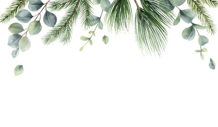 Watercolor vector Christmas card with fir branches and eucalyptus leaves. Ilustração