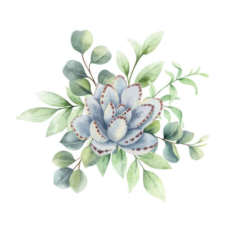 Watercolor vector bouquet with eucalyptus branches and succulent flower.