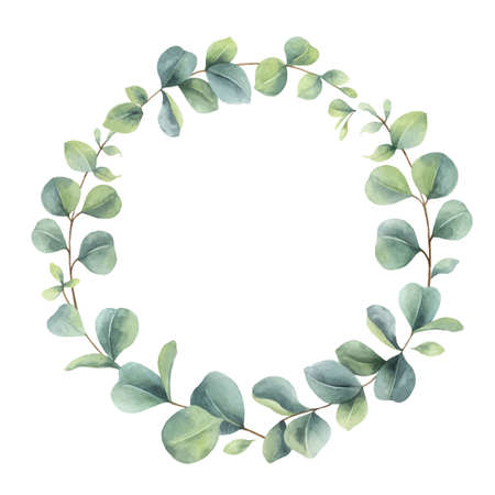 Watercolor vector wreath with eucalyptus branches and leaves. Vektorové ilustrace