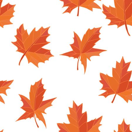 fallen: Orange yellow fallen autumn leaves isolated on white background. Seamless pattern. Vector.