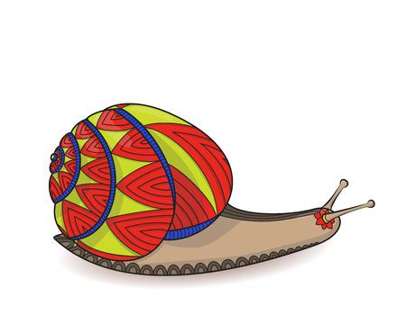 Cute snail red and yellow vector illustration. Closeup of invertebrates molluscs. Wild life Zen tangle. Wildlife Zentangle. Illustration