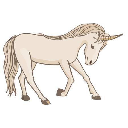 legendary: Unicorn on a white background.