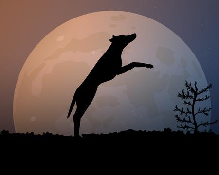 Moon and jumping dog illustration.
