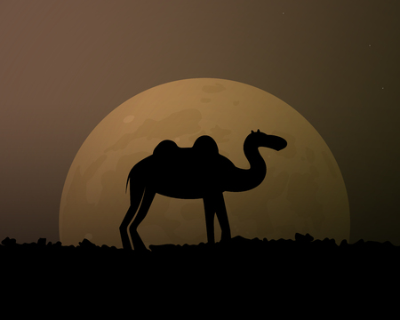Camel in the desert. The moon in the sky. Vector illustration. Animals of Africa.