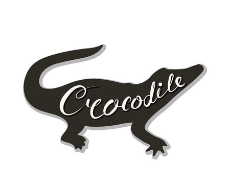 Silhouette of a crocodile on a white background. Vector illustration. Calligraphy inscription. Standard-Bild - 106955715