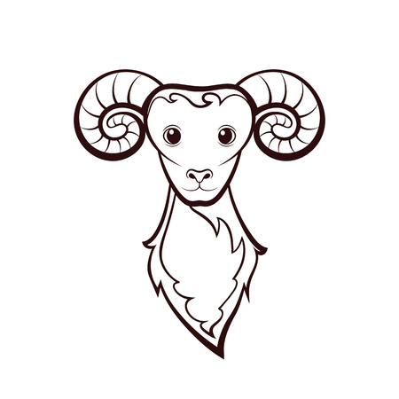 Head of a sheep. Drawing on a white background. Vector illustration. Animals wildlife design. Illustration