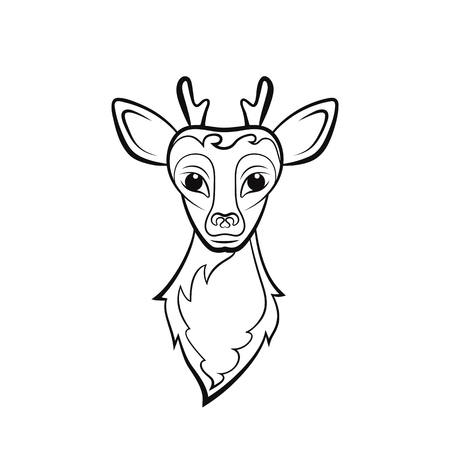 Head of a young reindeer. Drawing on a white background. Vector illustration. Animals wildlife design.
