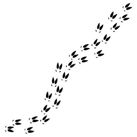 Empreintes de pieds d'élan. Illustration vectorielle. Empreinte animale sauvage Vecteurs