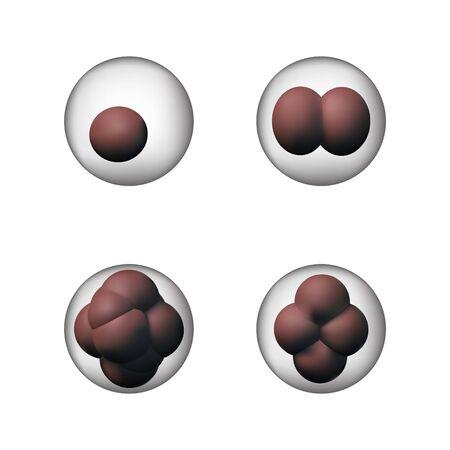 Set of biology cells. Vector illustration. Microbiology and medicine.