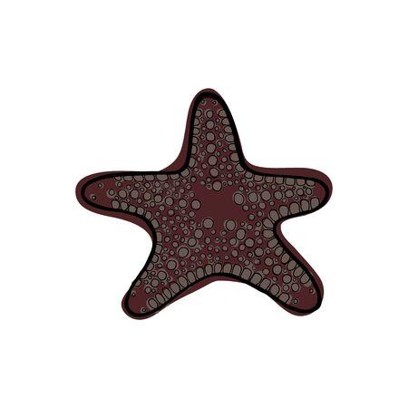 Brown star fish. Underwater animal. Vector illustration.