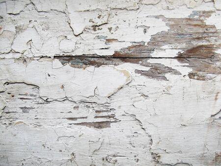 Vintage white background. Old wooden texture. Grunge aged material. 版權商用圖片