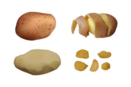 Chips, peeled and baked Potato set. Vector illustration. Vegetarian food.