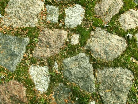 Stone pavement with moss. Old surface. Architecture background. Reklamní fotografie