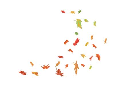 Falling maple leaves. Autumn season Vector illustration. Ilustrace