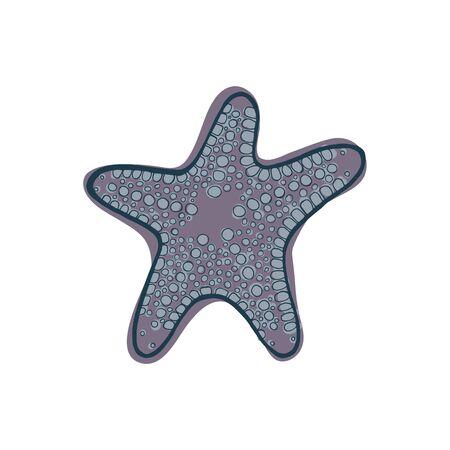 Gray starfish. Underwater animal. Vector illustration Star shape 向量圖像