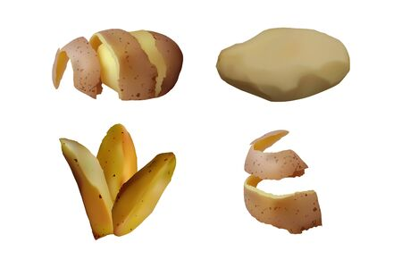 Peeled and baked Potatoes set. Vector illustration. Vegetarian food.