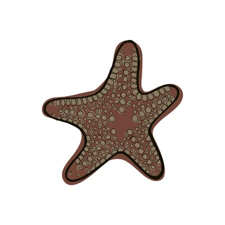 Brown starfish. Underwater animal. Vector illustration Star shape