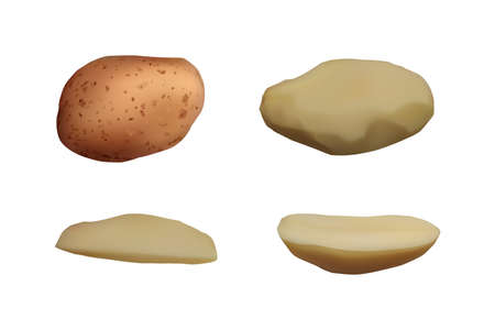 Peeled Potatoes set. Vector illustration. Vegetarian food.