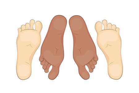 The feet of a adult man and a woman. A married couple in bed. Vector illumination.