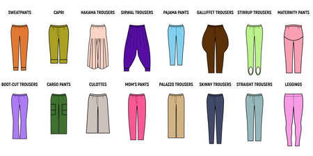 Trousers for woman set. Pants vector illustration for girls.