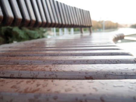 Close up of drops on the bench. Park after rain, wet wooden furniture surface