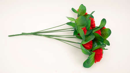 Artificial plastic red carnations on white background. Dead monument decoration