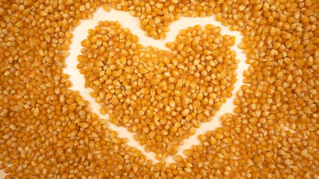 Popcorn maize heart. Dry pop corn. Healthy eating. Yellow grain agriculture 免版税图像