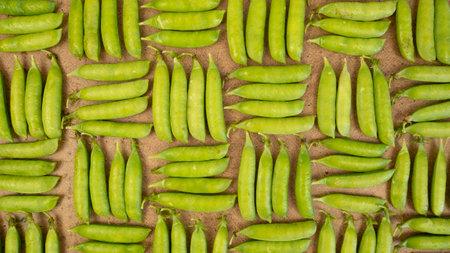 Green peas background. Geometric pattern, vegetatian food harvesting 版權商用圖片