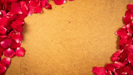 Red rose petals frame on retro background. Vintage old wooden design 版權商用圖片