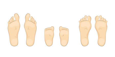 Vector illustration of a baby,mother and father soles. feet, sole, body part.