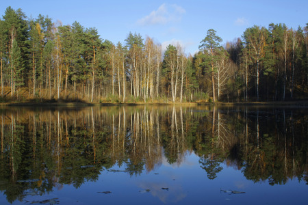reflected: Autumn forest reflected in the lake Stock Photo