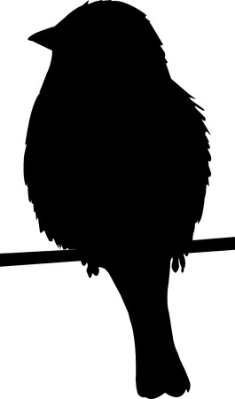 sparrow: Sparrow on a wire silhouette on white background