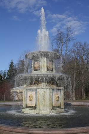 peterhof: fountain in peterhof russia