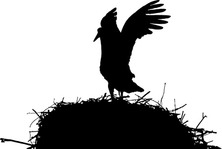stork on nest vector silhouette