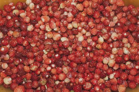 red, ripe wild strawberry texture background 写真素材
