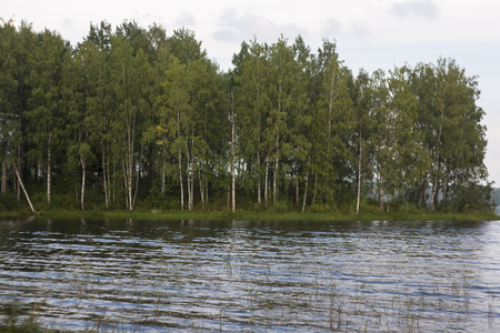 big, wooded island in the lake