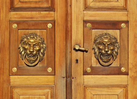 Wood door golden lion knocker background photo