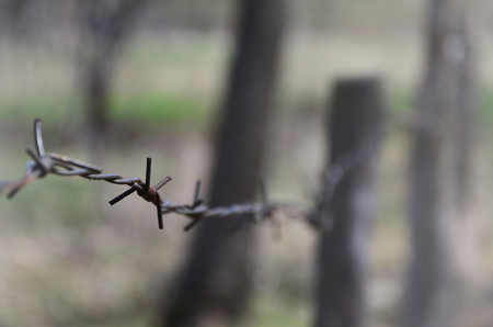 Macro shot of an element of old and rusty barbed wire with a blurred background. Fragment of a village fence of a territorial site