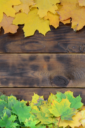 Composition of many yellowing fallen autumn leaves on a background surface of natural wooden boards of dark brown color