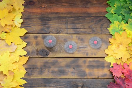 Several spinners among the many yellowing fallen autumn leaves on the background surface of natural wooden boards of dark brown color