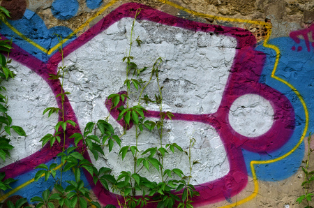 A detailed image of a colored graffiti drawing, which is overgrown in the thickets of ivy. Background street art picture Stock Photo