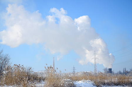 The industrial plant is located behind the swampy terrain, covered with snow. Large field of yellow bulrushes Stockfoto - 94646387