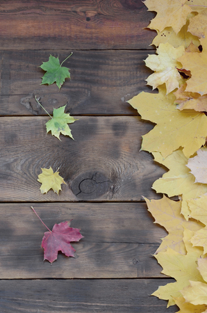 Some of the yellowing fallen autumn leaves of different colors on the background surface of natural wooden boards of dark brown color