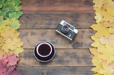 A cup of tea and an old camera among a set of yellowing fallen autumn leaves on a background surface of natural wooden boards of dark brown color