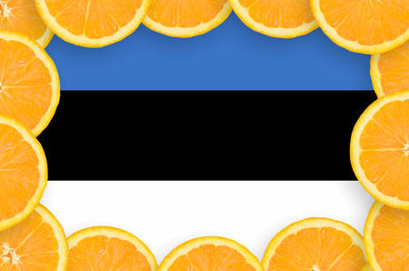 Estonia flag  in frame of orange citrus fruit slices. Concept of growing as well as import and export of citrus fruits
