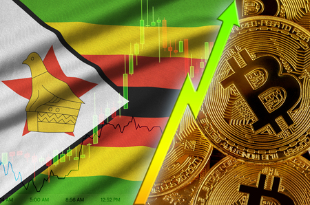 Zimbabwe flag  and cryptocurrency growing trend with many golden bitcoins. Concept of raising Bitcoin in price or high conversion in cryptocurrency mining