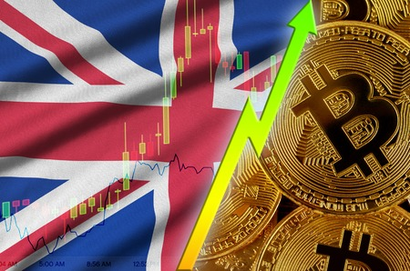 Great britain flag  and cryptocurrency growing trend with many golden bitcoins. Concept of raising Bitcoin in price or high conversion in cryptocurrency mining