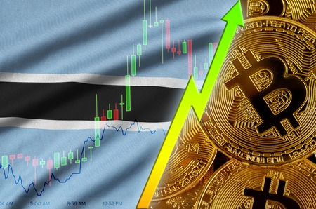 Botswana flag  and cryptocurrency growing trend with many golden bitcoins. Concept of raising Bitcoin in price or high conversion in cryptocurrency mining