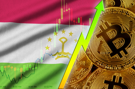 Tajikistan flag  and cryptocurrency growing trend with many golden bitcoins. Concept of raising Bitcoin in price or high conversion in cryptocurrency mining